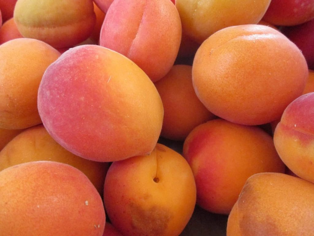 apricot, Foods that start with A