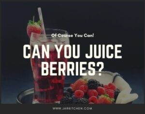 can you juice berries